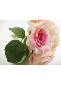 Kytica ruží - ružové